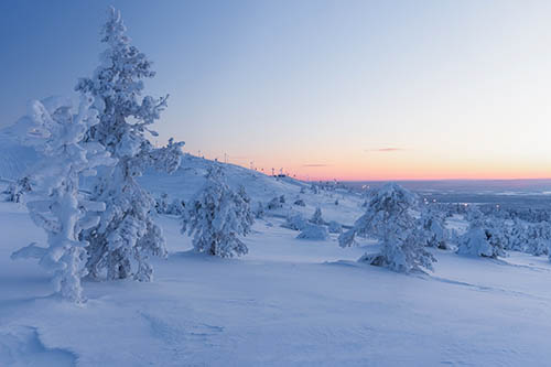 Winter Scenery from Kittilä, Lapland
